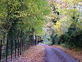 Autumnal road near Knodishall church. - geograph.org.uk - 1045314.jpg
