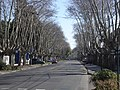 Av. Libertador - panoramio.jpg