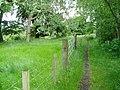 Avon Walkway - geograph.org.uk - 849213.jpg