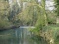 Avon weir - geograph.org.uk - 379551.jpg