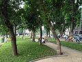 Bờ hồ Thiền Quang, phố Quang Trung, Hà Nội 001.JPG