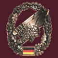 BBM Barettabzeichen FschJg pix.png