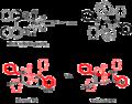 BINAP-Ru transition state.png