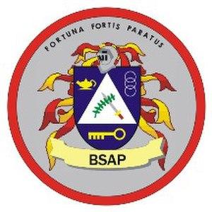 Basic Strategic Arts Program - BSAP Crest