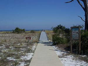 Bald Point State Park - Image: Bald Point SP beach path 01