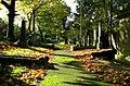 Balmoral Cemetery - geograph.org.uk - 1019830.jpg