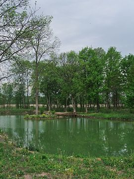Bardača Nature reservoir.jpg