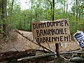 Barrier with protest-signs in the Hambach forest 02.jpg