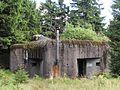 Bartošovice v Orlických horách, Neratov, R-S 83 (rok 2010; 01).jpg