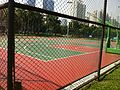 Basketball field Shenzhen Central Park.JPG