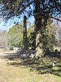 Bassett Cemetery Bassett AR 2014-02-22 034.jpg