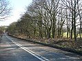 Batley Road, West Ardsley - geograph.org.uk - 1747105.jpg