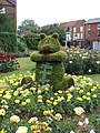 Bear topiary in Colchester, Essex.jpg