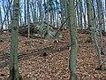 Beliansky hŕbok - panoramio.jpg