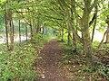 Benkid77 Brackenwood-Storeton footpath 6 240709.JPG