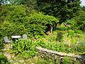 Berkshire Botanical Garden (herb garden).JPG