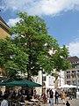 Bielefeld (14779915785).jpg