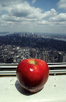 укуси большое яблоко скачать бесплатно