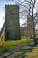 Birch trees and tower of old church, Heptonstall churchyard - geograph.org.uk - 1679723.jpg