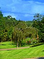 Blick von der Roseninsel auf den Teetempel auf dem Kauzenberg - panoramio.jpg