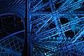 Blue (2697117262).jpg