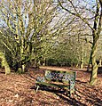 Blue seat - geograph.org.uk - 1151949.jpg