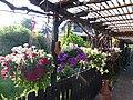 Blumenparadies - panoramio.jpg