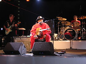 Bo Diddley Wolfsburg 2004 05.jpg