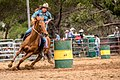 Boddington Rodeo 2015 (128246453).jpeg