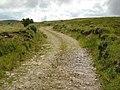 Bog Track, Clahane - geograph.org.uk - 497350.jpg