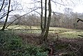 Boggy pond by the River Line - geograph.org.uk - 1724144.jpg