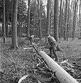 Bosbewerking, arbeiders, boomstammen, gereedschappen, Bestanddeelnr 251-7932.jpg