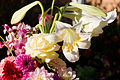 Bouquet of flowers apr07.jpg