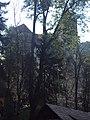 Bran Castle 016.jpg