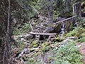 Bridge on trail to Tanal Lake - panoramio.jpg