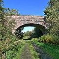 Bridge over dismantled railway - geograph.org.uk - 1521920.jpg