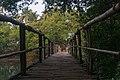 Bridge to Mandrem Beach 2020-02-27-3.jpg