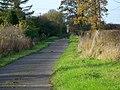 Bridleway near Ashton Common - geograph.org.uk - 1585997.jpg