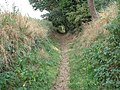 Bridleway to Carleton St Peter - geograph.org.uk - 1463525.jpg