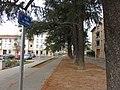 Brignais - Allée des Cèdres.jpg