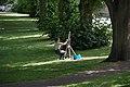 Bristol MMB «E9 Cotham Park.jpg