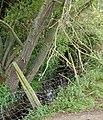 Broadwell Brook close-up - geograph.org.uk - 1313925.jpg