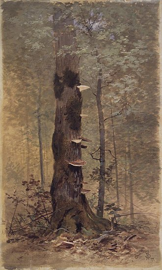 Francis Hopkinson Smith - In the Woods by Francis Hopkinson Smith
