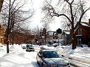 Buffalo winter scene