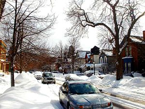 Oak Street Syracuse Ny  Property Taxes