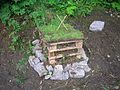 Bug Hotel at the Vale View.JPG