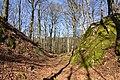Burgruine-Hattstein-Halsgraben-JR-E-3740-2020-04-02.jpg