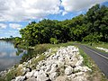 Busse Woods Bicycle Trail - panoramio.jpg