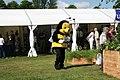 Busy Bee at Ingilston flower show. - panoramio.jpg