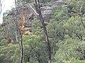 Bylong Valley Way - panoramio.jpg